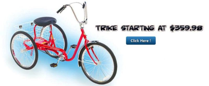 Recumbent Trikes Recreational Trikes Industrial Tricycles