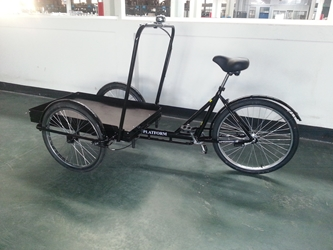 True Bicycles Cargo Platform Trike