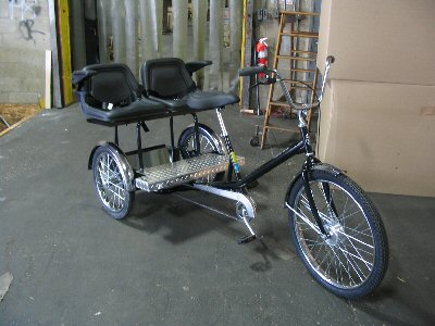 Worksman Family Dual Chariot