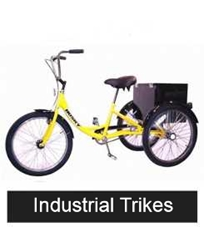 Different  Models of Industrial trikes