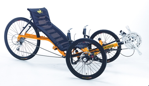 TW-Bent Artifice Recumbent Trike