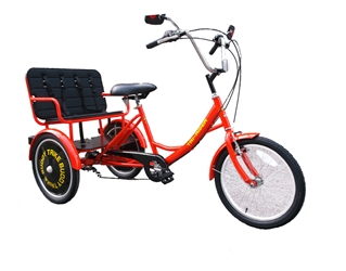 True Bicycles Family Transporter Trike