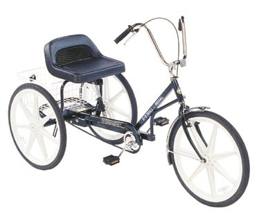 Trailmate EZ Roll Regal Trike