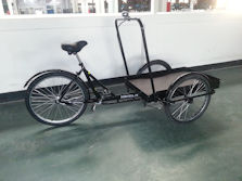 True Bicycle Platform Trike