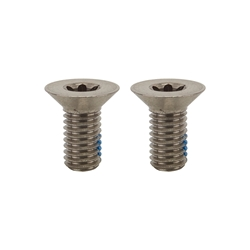 SRAM Disc Adapter Screws