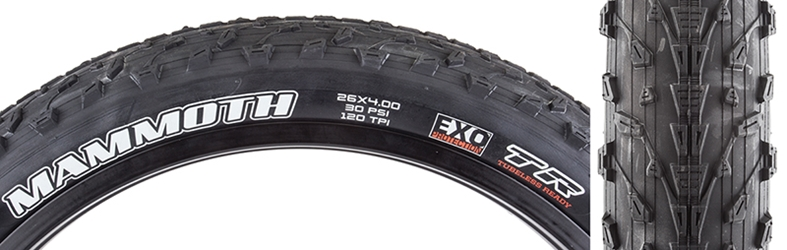 MAXXIS Mammoth DC/EXO/TR